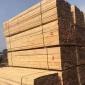 �V州市建筑木方工程工地�S� 原木加工 枕木木方  �射松 方木方